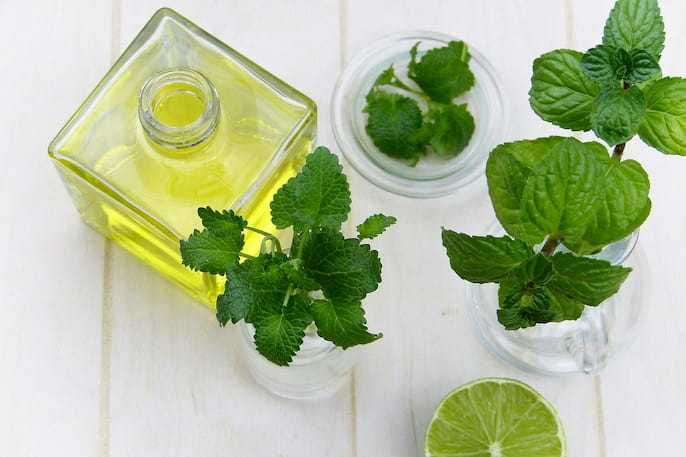 Expectorant Home Remedies